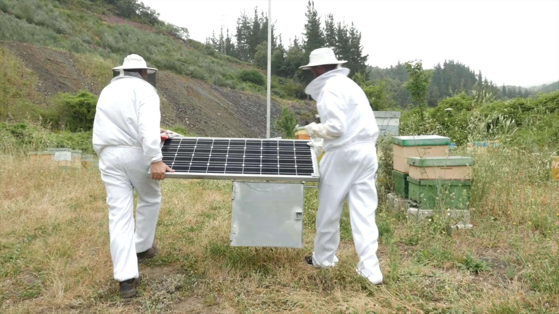 trabajo con drones miel